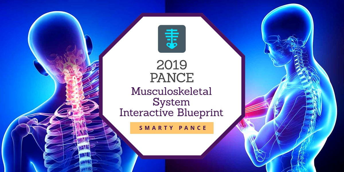 2019 Interactive Musculoskeletal System Content Blueprint for the Physician Assistant National Certifying Examination (PANCE)